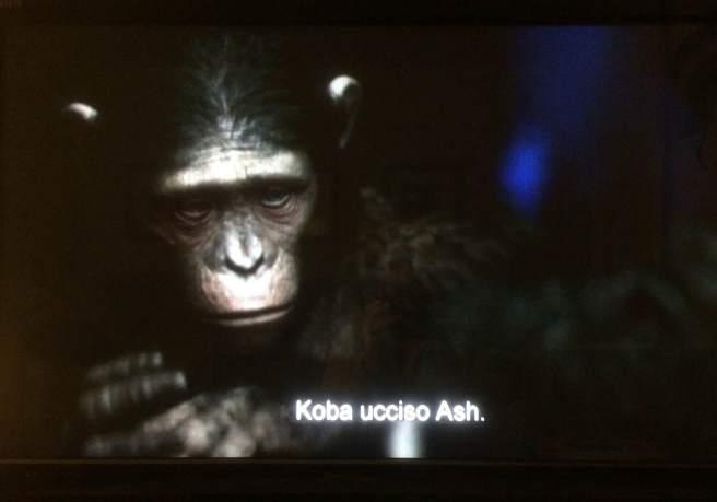 Blue Eyes signing to his father, Caesar, that Koba killed Ash.